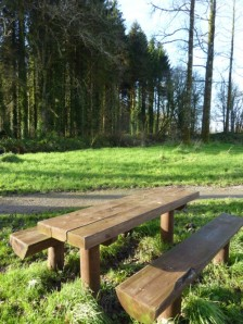 One of the picnic benches at Warrenscourt